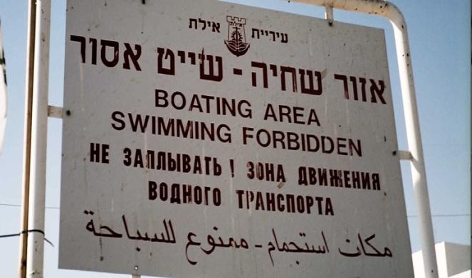 20swimming